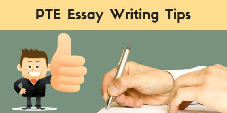 Informative essay examples high school picture 8