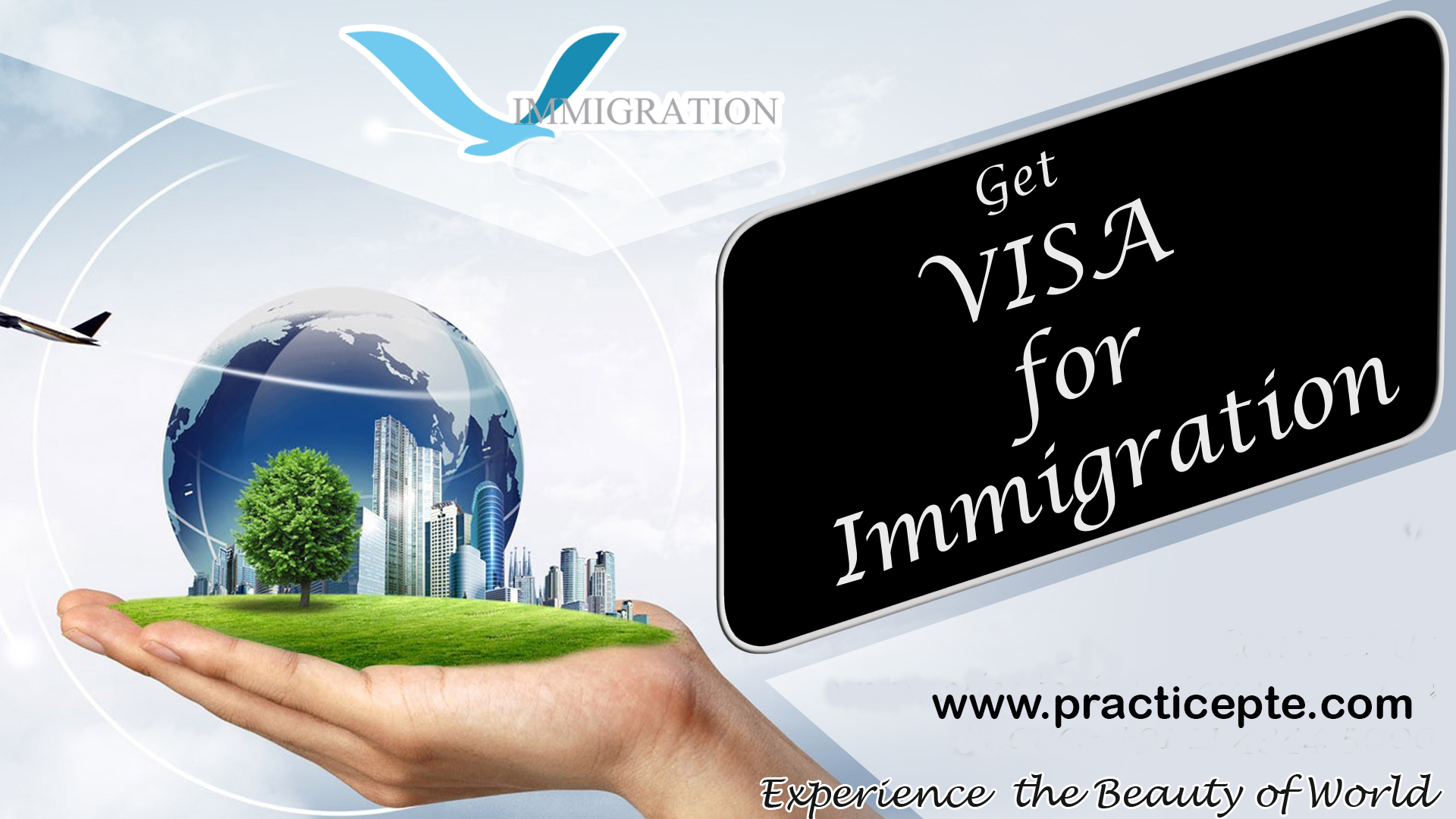 New zealnad Immigration, Practice, Pte, free assistment