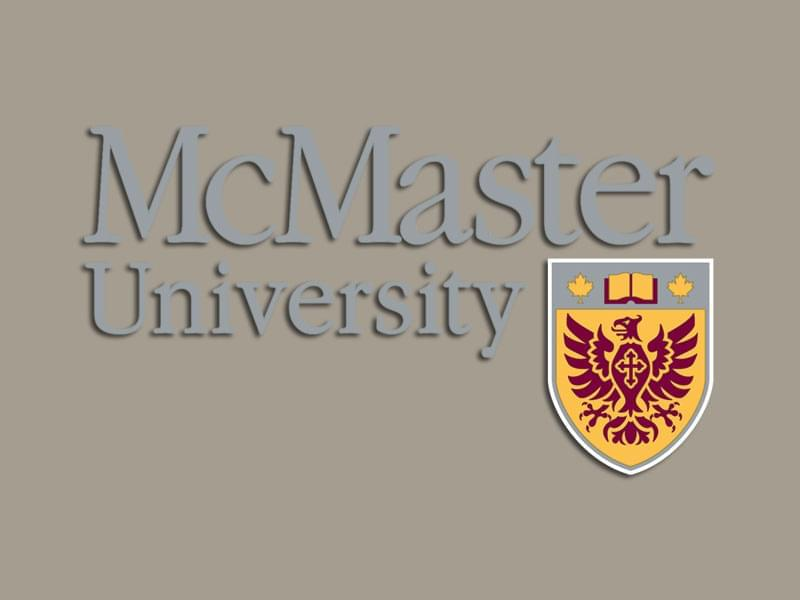 study in McMaster University, practicepte.com, know more university information